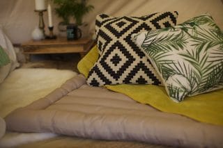 Malini Eastwood Cushion and Carmen Cushion