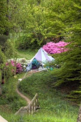 Harlequin Bell Tent
