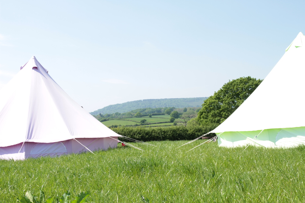 Fiesta Fields - Pastel Lilac and Apple Green Bell Tent