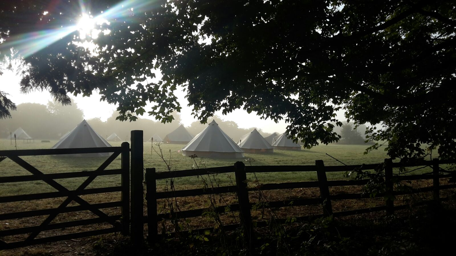 Neutral Bell Tents