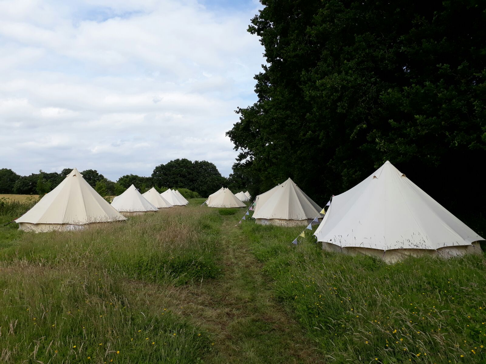 Sandstone Bell Tents in a Field